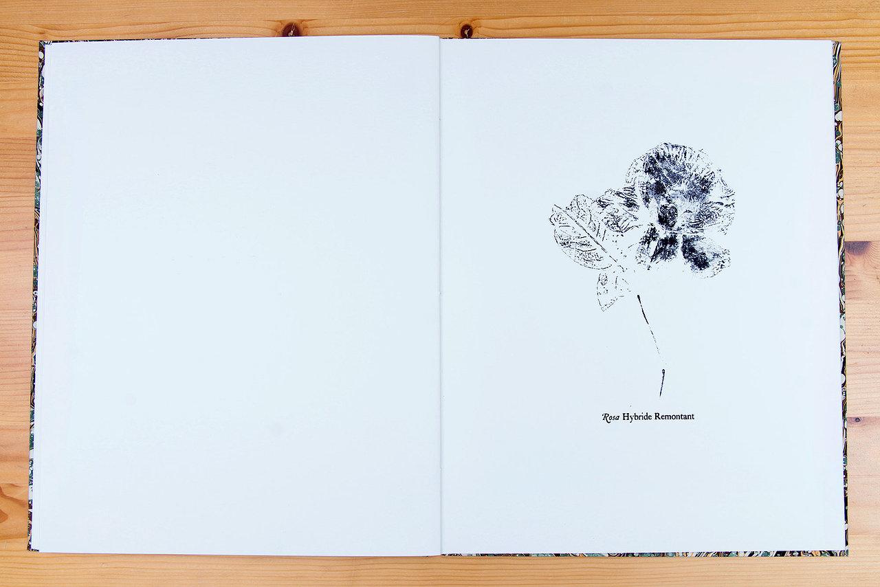 Trivialessential Book 2 Roeland Verhallen